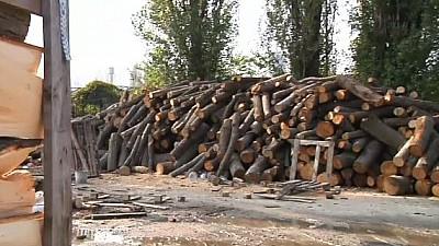 Cât costă lemnele de foc pentru iarna 2019 - 2020. De unde se pot cumpăra și cum ne aprovizionăm