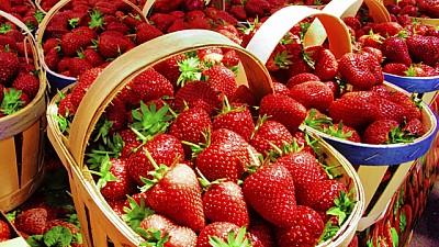 Aproximativ 18 tone de căpşuni produse în Republica Moldova au fost interzise în Federaţia Rusă
