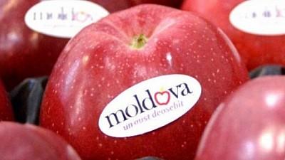Produsele moldoveneşti, tot mai căutate peste hotarele ţării. În 2018 volumul exporturilor a crescut cu aproape 12% faţă de 2017