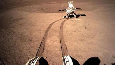Premieră istorică! Seminţele de bumbac trimise pe Lună de China au încolţit