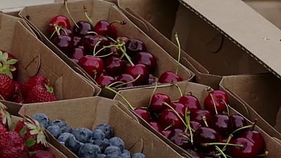 Un tânăr din Capitală a lansat o afacere eco. Călin Harti produce pungi, cutii și caserole biodegradabile