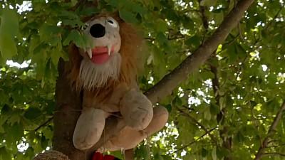 O curte din Capitală a fost amenajată cu jucării de pluș care atârnă pe copaci (VIDEO)